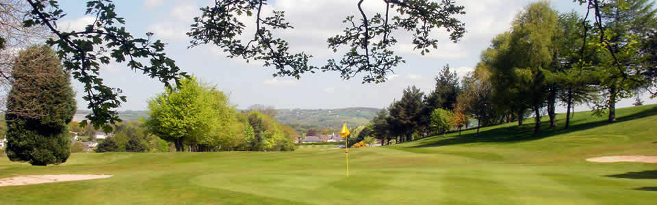 Mold GC, Union of Flintshire Golf Clubs