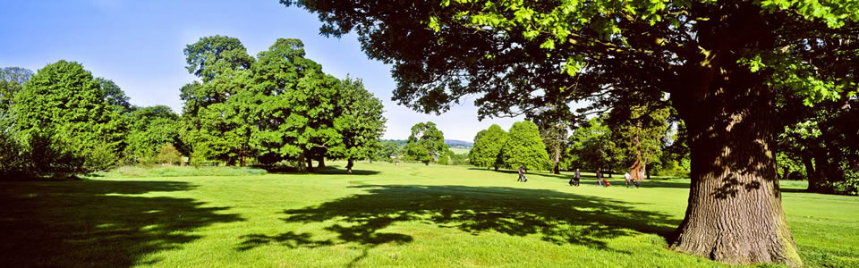 Northop GC, Union of Flintshire Golf Clubs